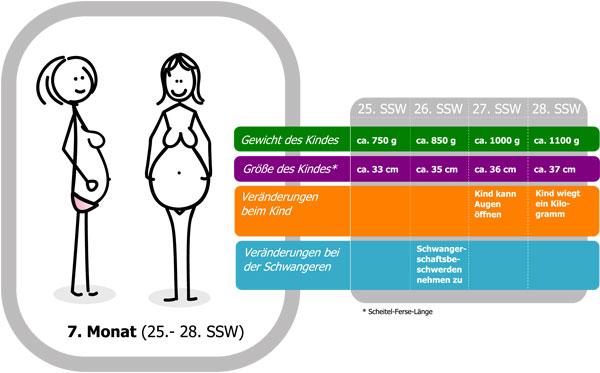 28 ssw 28 schwangerschaftswoche ende zweites trimenon schwangerschaftsdrittel schwangerschaft. Black Bedroom Furniture Sets. Home Design Ideas