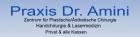 Logo Plastische Chirurgin : Dr. med. Peymaneh Amini, Praxis für Plastische/Ästhetische Chirurgie,Handchirurgie, , Bad Homburg