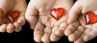 Herz - Kardiologie Übersicht