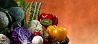 20100518-Mit Blaulicht im Kampf gegen verdorbene Lebensmittel