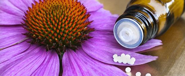 Homöopathie ohne Wirkung?