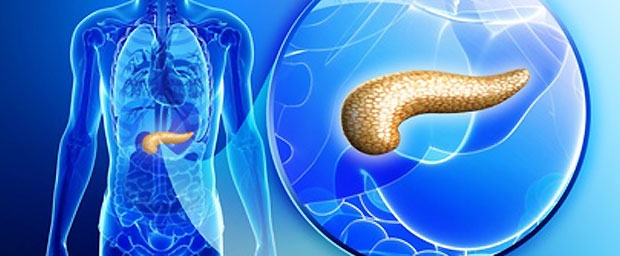 Künstliche Bauchspeicheldrüse