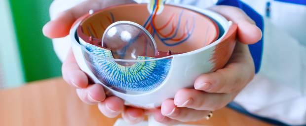 Glaskörperentfernung (PPV, Vitrektomie)
