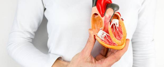 Untersuchungen bei Arteriosklerose