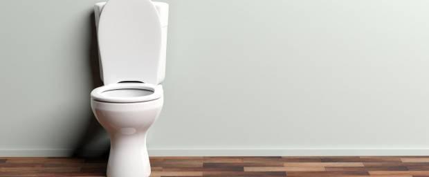 Toilette mit Spülkasten und offenem Deckel