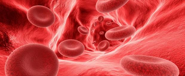 Rote Blutzellen