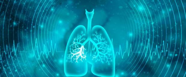 Spiegelung von Lufröhre und Bronchien