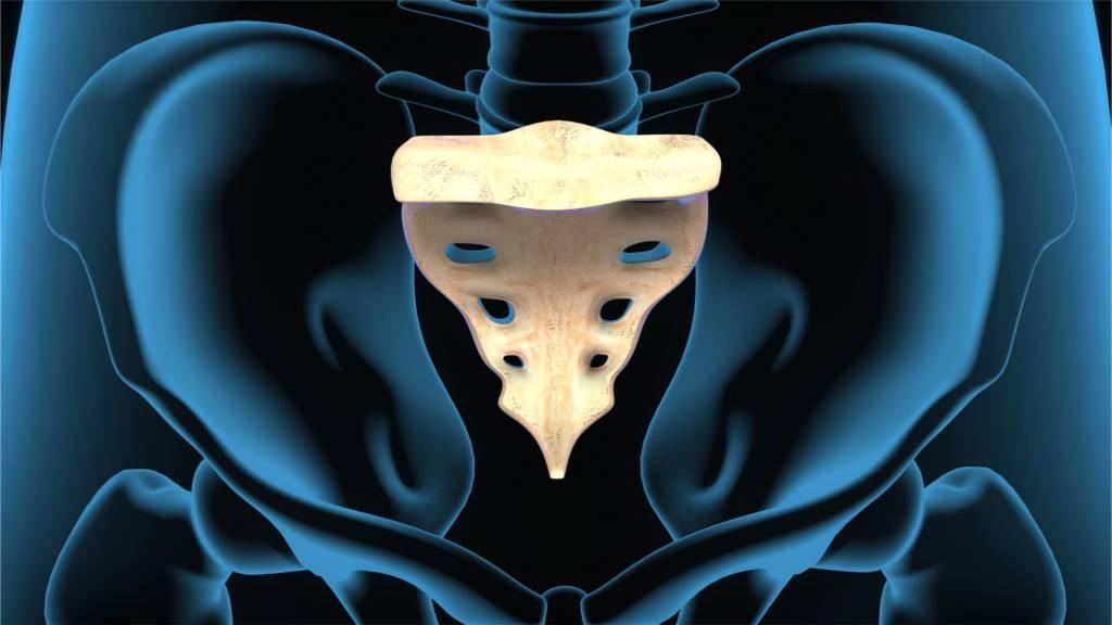 Steißbeinbruch | Ursachen, Symptome, Untersuchung, Therapie bei ...