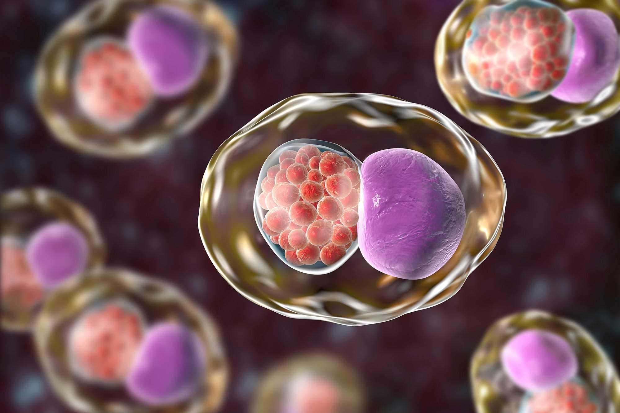 Jahrelang mann chlamydien unbemerkt orhallawi
