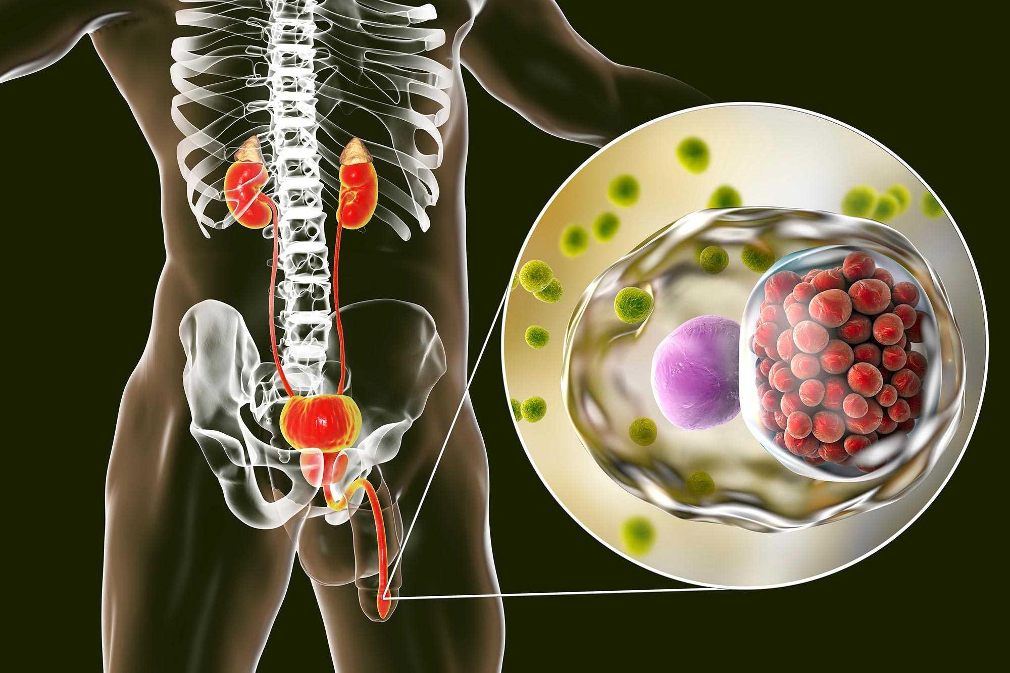 Schwanger geschwollene lymphknoten leiste frau Geschwollene Lymphknoten