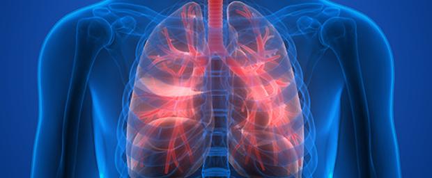 Wie Lange Ist Nikotin Im Blut
